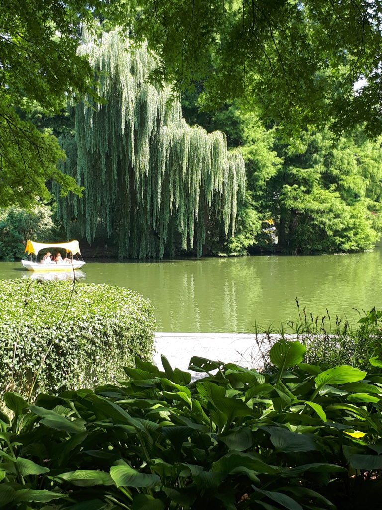 Luisenpark Mannheim Bootsfahrt