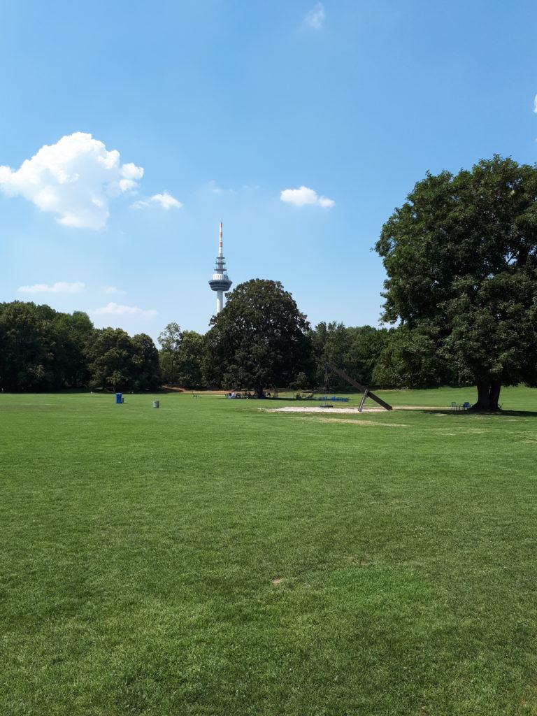 Luisenpark Mannheim große Wiese